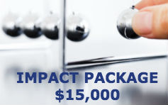 All Starter Package benefits plus touch thousands of new investors...